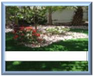 דשא סינטטי אמריקאי