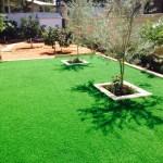 מרכז הדשא - עיצוב ותכנון גינות